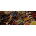 Premium Lot Gewürze und kulinarische Salze